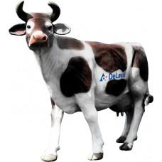 Корова большая