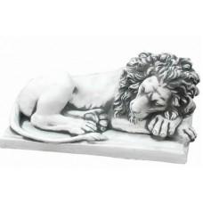 Лев лежит на боку